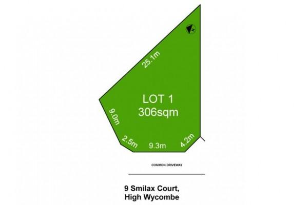 Lot 1-9 Smilax